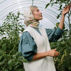Zelf groenten en kruiden kweken